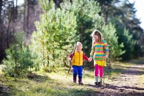 yürüyüş orman iki çocuk