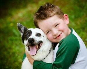 hayvanlar çocuklar için uygun hayvanlar