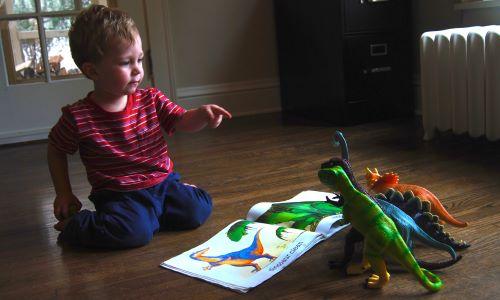 Dinozor oyuncakları ve kitabı ile vakit geçiren çocuk