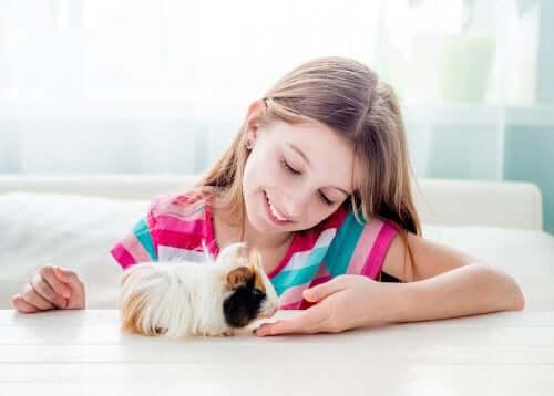 Şehirde Yaşayan Çocuklar İçin 7 Evcil Hayvan Önerisi