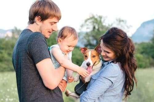 Bebeğin Doğumuna Evcil Hayvanınızı Alıştırın