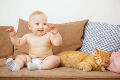 bebeklerin hayvanlarla ilişkisi