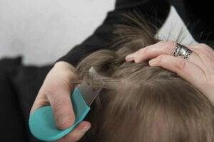 Bit tarağı ile çocuğunun saçlarını tarayan anne