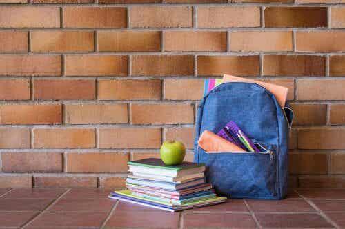 okul çantası ders kitapları
